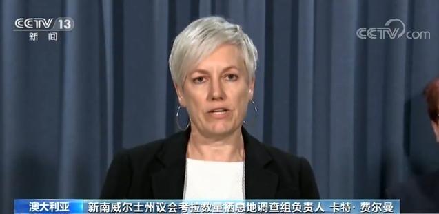 澳大利亚议会调查显示:新南威尔士州考拉恐在30年内灭绝