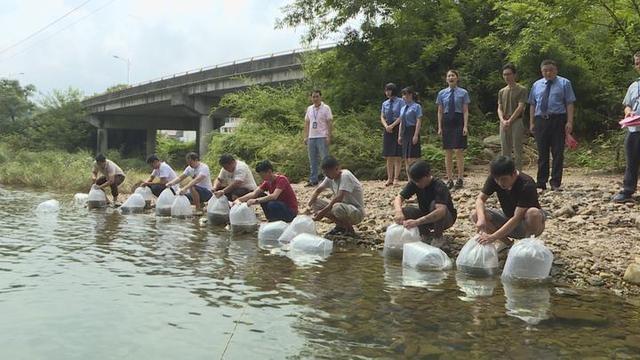 浦江县检察院对8名非法捕捞者不起诉 32万尾鱼苗畅游壶源江