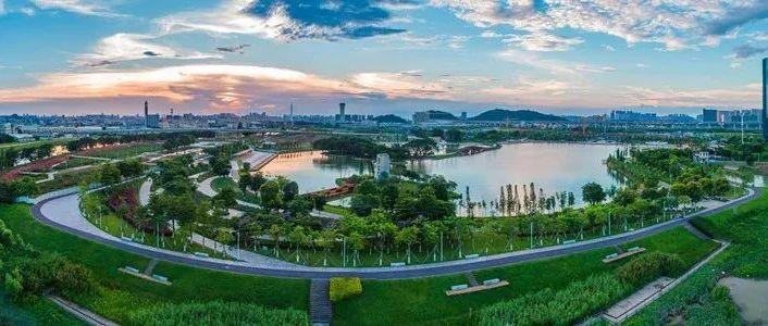 """三龙湾三大公园陆续开放!三年投32.3亿打造""""5分钟公园生活圈""""!"""