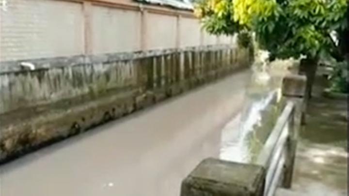 恶臭扑鼻!东莞一条河水污染严重,水体发黑,附件居民不敢靠近