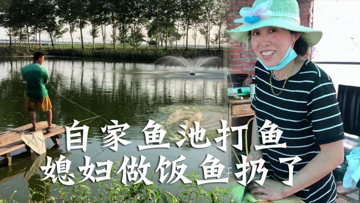 农民王小:鱼池小喷泉开工,一网打3条鱼全扔了?媳妇饭都做好了