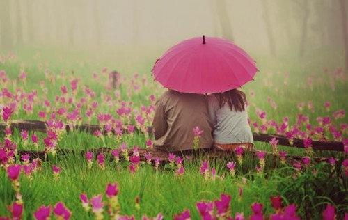 一花一世界,一叶一菩提,花叶总会分离