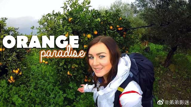 行走在可可西里的橘子天堂