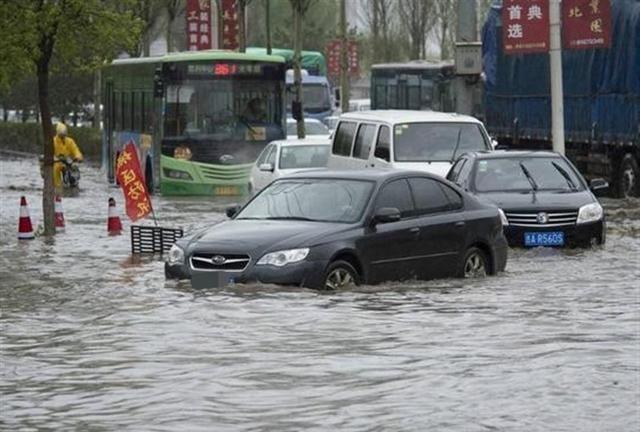 """一场大暴雨后,新能源汽车""""遮羞布""""保不住了"""