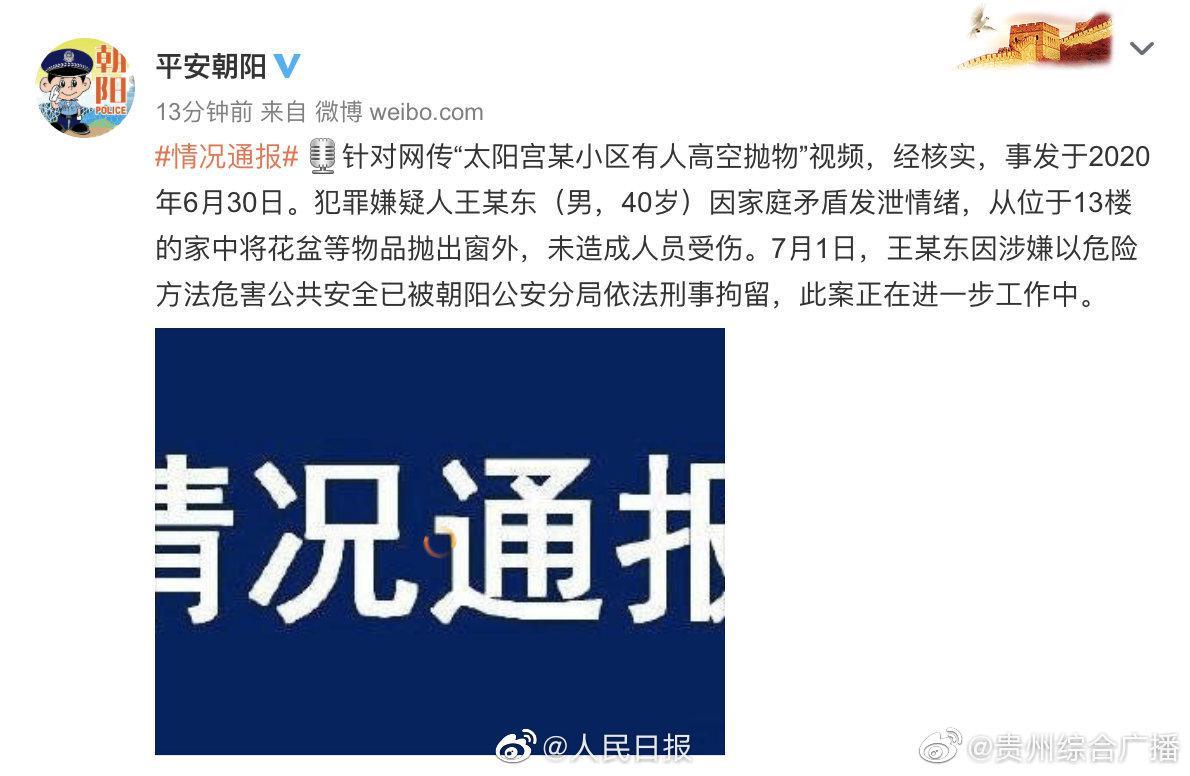 北京男子13楼家中扔出花盆被刑拘