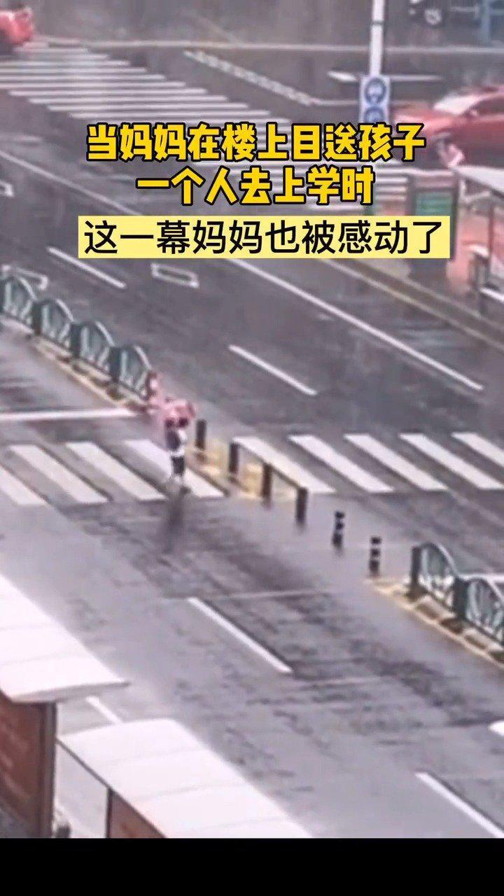 男孩上学路上向停车等待的人三鞠躬