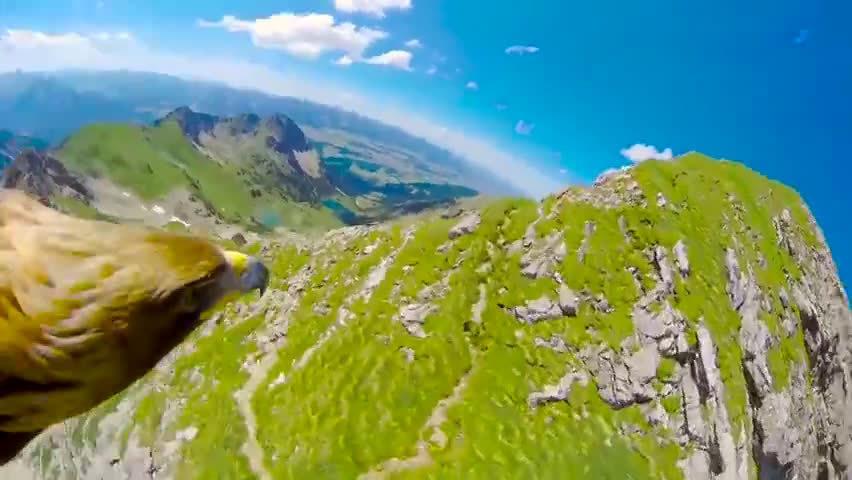 和雄鹰一起飞跃阿尔卑斯山~