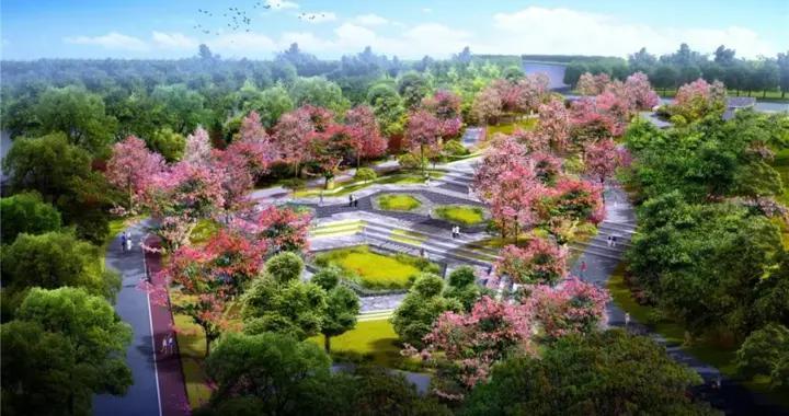 动植物的天堂!生态、宜居、高颜值的马銮湾新城,颜值初显
