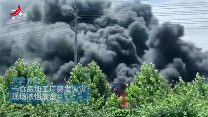 突发!一食品厂突发火灾 现场宛如战场 黑烟冲天 直升机出动救援