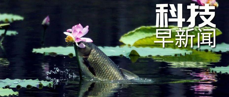 我国成功发射高分多模卫星;贵州山中怪声初步认定为鸟叫丨科技早新闻