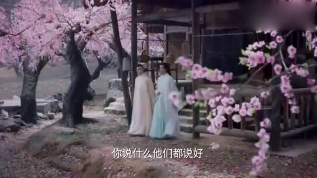 赵又廷X杨幂 三生三世十里桃花