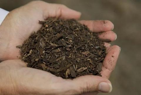 被掏空的贫瘠废土,摇身一变成肥土,原来烂菜叶子是关键