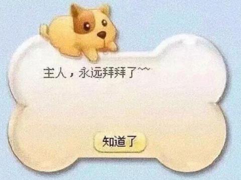 从QQ宠物的落幕说开去,社交情感如今有了更好的归宿
