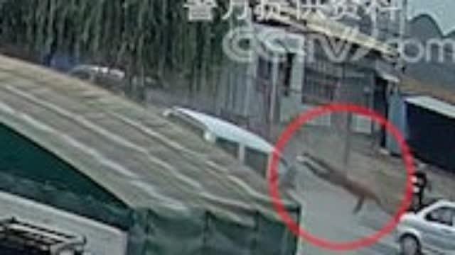 面包车驾驶人未系安全带 雨天侧滑出事故身亡( )
