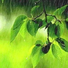 黑龙江高考天气预报发布!气象台重要提醒……