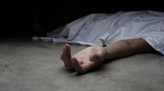 澳洲8旬老太被心爱宠物猫抓伤,小猫舔舔伤口,老人昏迷9天丧命