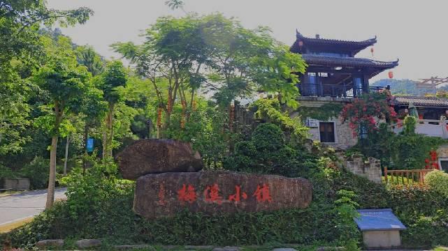 位于云浮市新兴县的天露山,是粤中南部最高峰,海拔1251米……