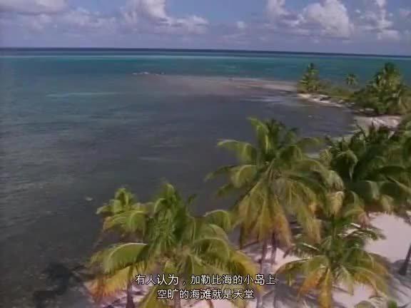 国家地理——加勒比海底世界