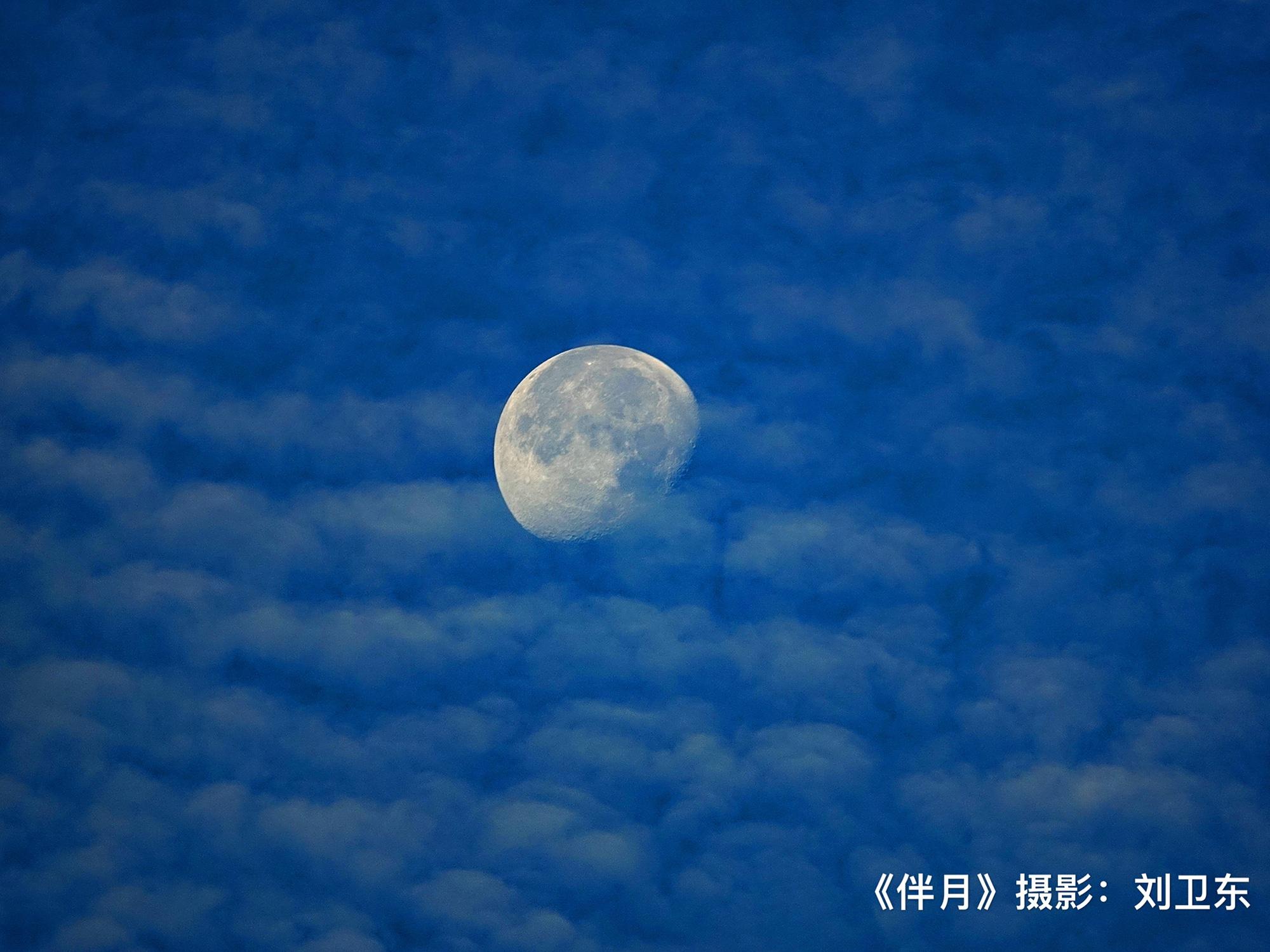 刘卫东摄影作品欣赏