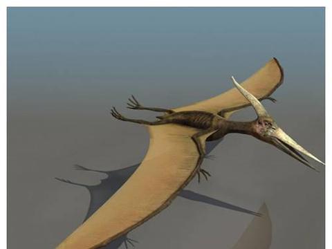 美国内战时抓到一巨型翼龙,与士兵留下合影照片,究竟是真是假?