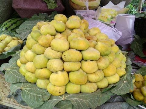 """无花果在新疆被称为""""糖包子"""",有丰富的营养,但5类人不宜食用"""