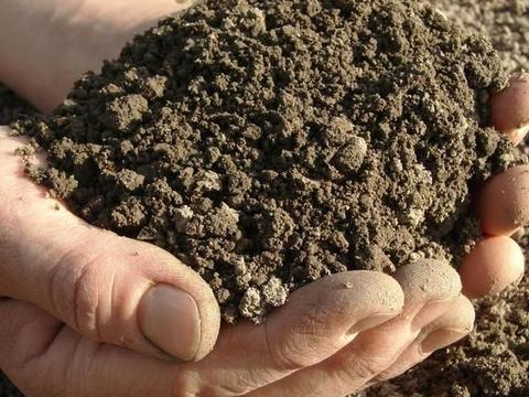 土也可以吃,因为土是一味中药,可治呕吐、粉刺、腮腺炎……
