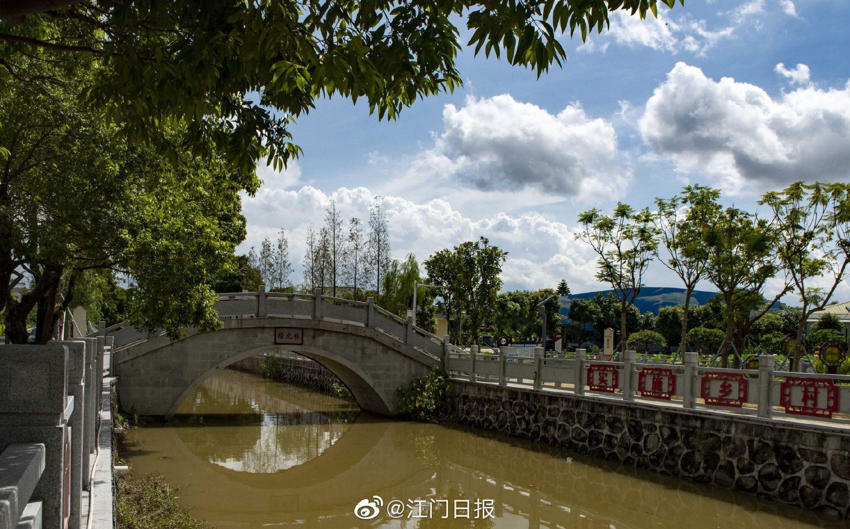 潮连卢湾村:夏日赏荷好去处