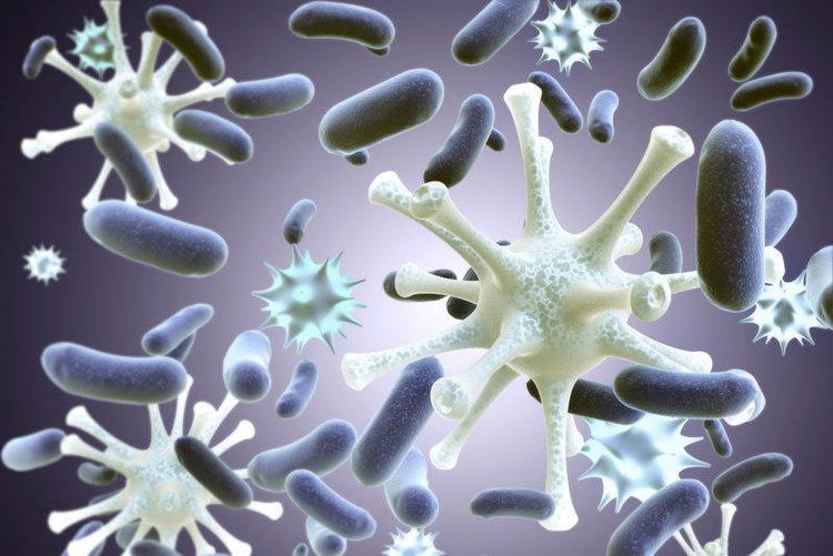 诱发癌症、与自体免疫疾病相关的病毒–EB