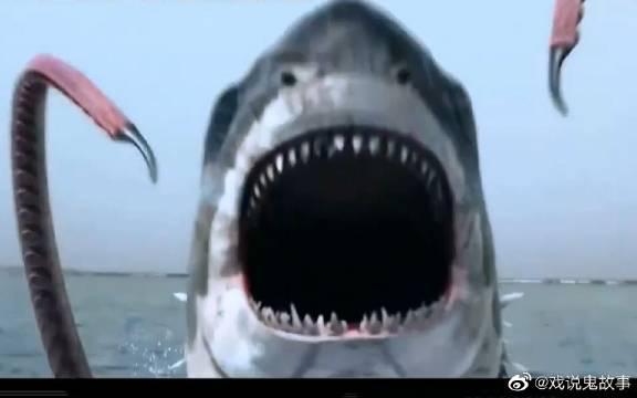 《八爪狂鲨大战梭鱼翼龙》女孩捡到一条鲨鱼宝宝带回家养……