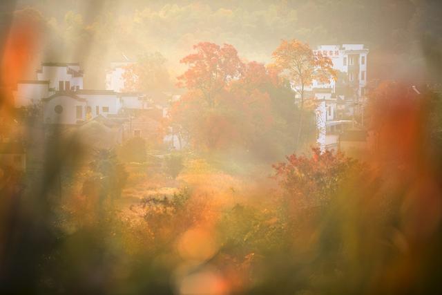 最绚丽的秋天在皖南,离宏村2公里远的塔川村,引无数艺术家前来