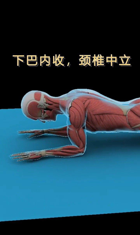 ⭕️健身新手(3D肌肉图解)常见错误动作❌