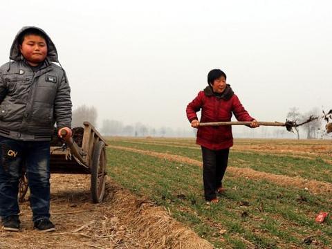 农民的职业很伟大,可他们为何都不情愿让子女当农民?