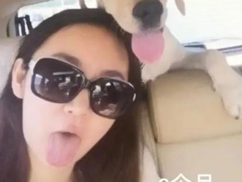 狗狗过世后,她去医院捐赠狗粮,结果发现一模一样的他
