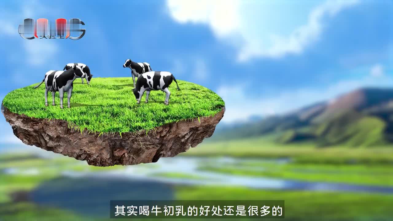 """视频   OMG实验室:对牛初乳""""坚持不懈""""的是它"""