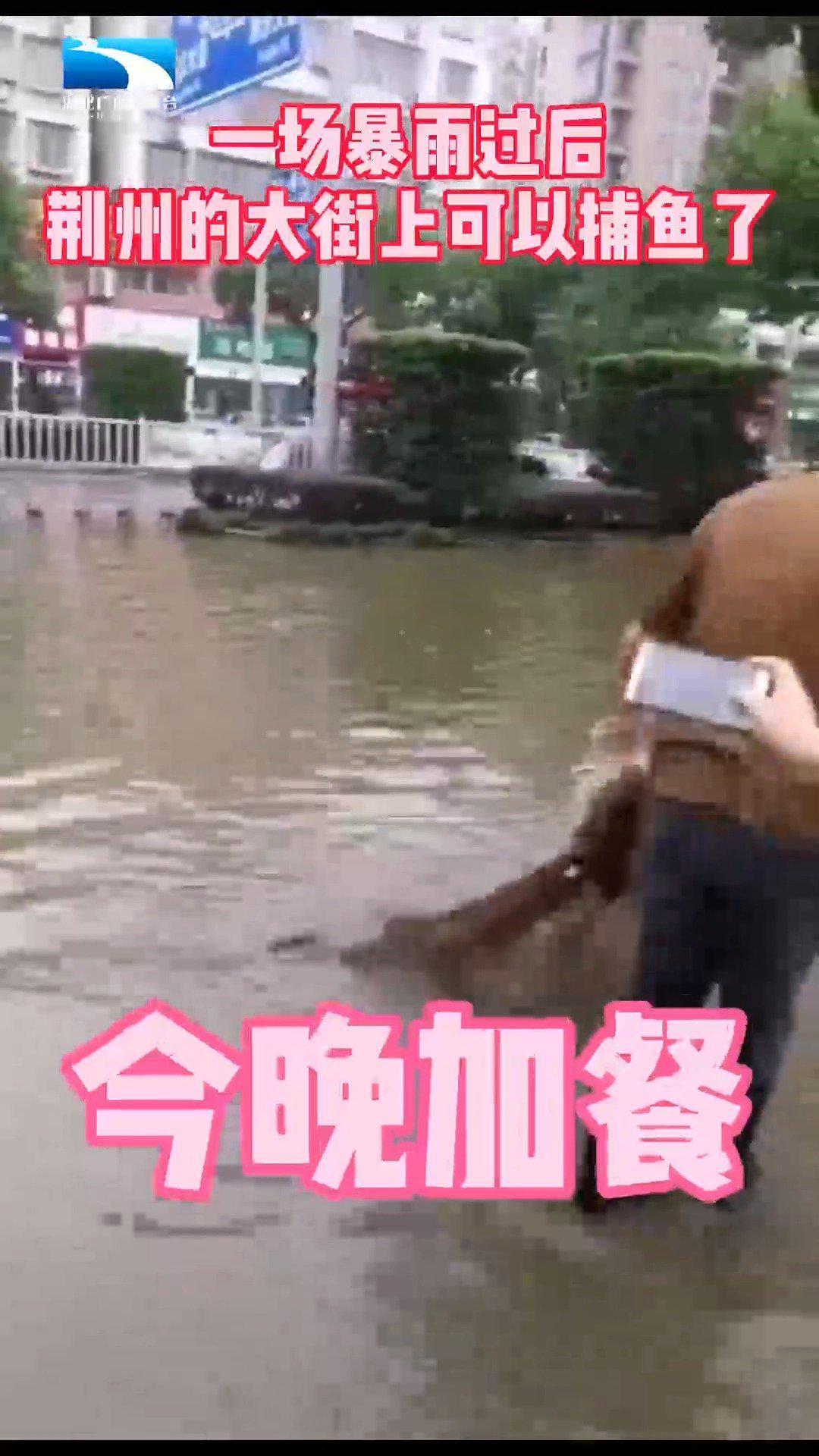 一场暴雨过后,荆州的大街上可以捕鱼了