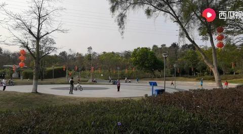 """深圳平湖生态园,骑行爱好者的""""天堂"""""""