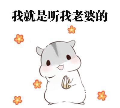 """我国最""""宠老婆""""的三座城市,上海上榜,另外两座你来猜"""