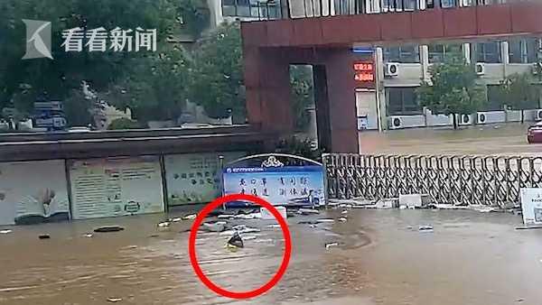 暴雨后担心学生被困,交警小哥游到学校门口查看,又游泳离开