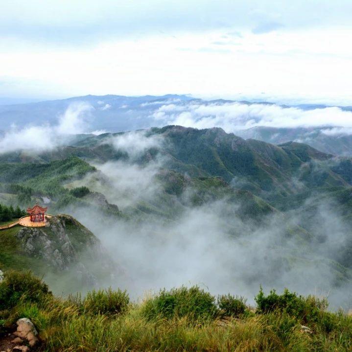 最美的季节 我在苏木山等你!