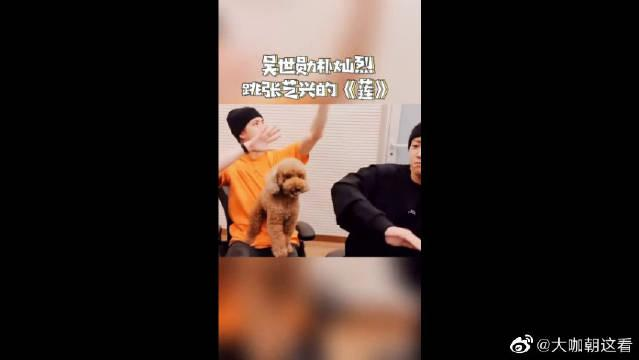 吴世勋、朴灿烈跳张艺兴《莲》 团魂炸裂!
