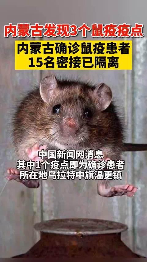 中国新闻网消息,据内蒙古卫生健康委副主任……