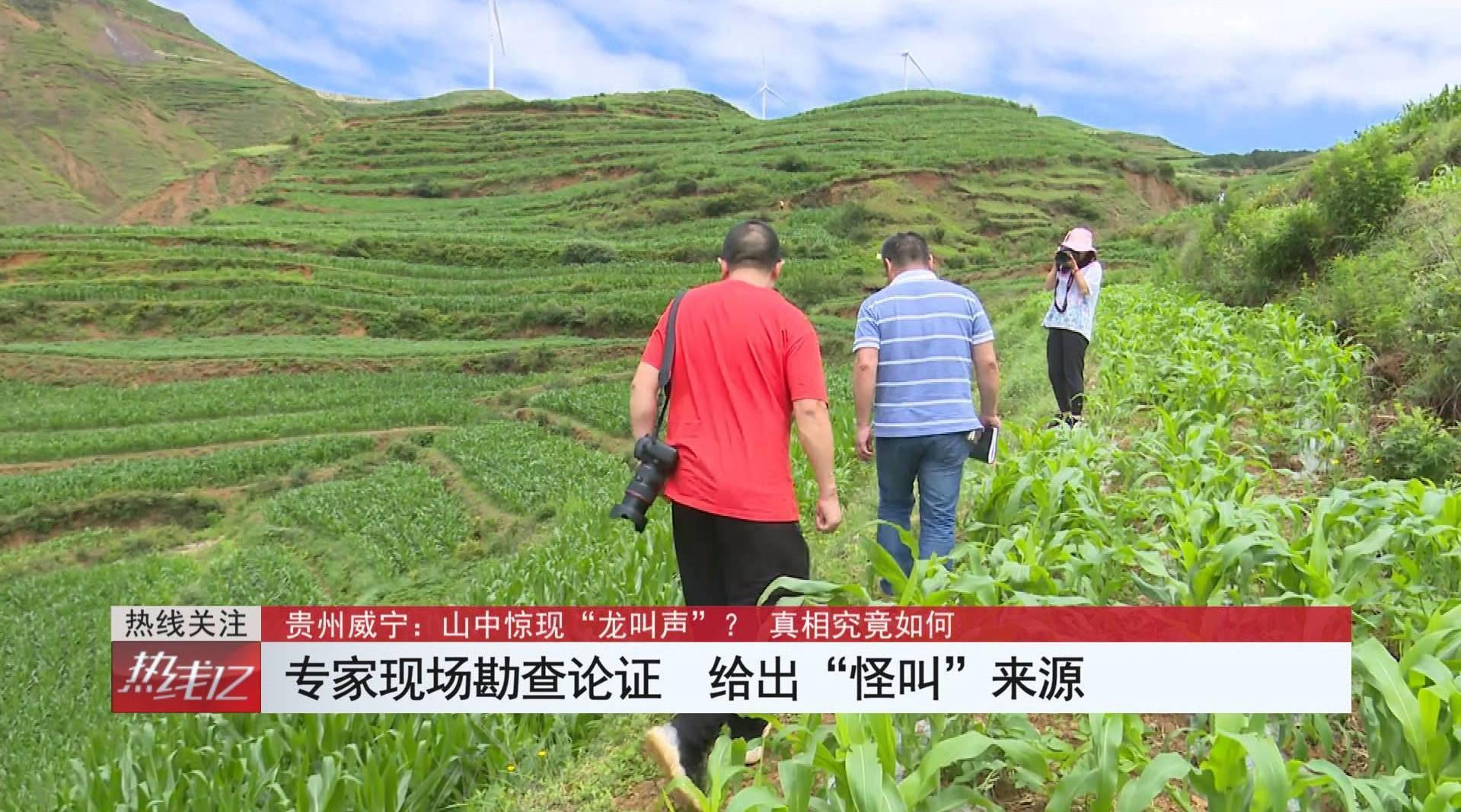 """贵州省威宁县检察院提前介入秀水镇""""龙吟""""造谣案"""