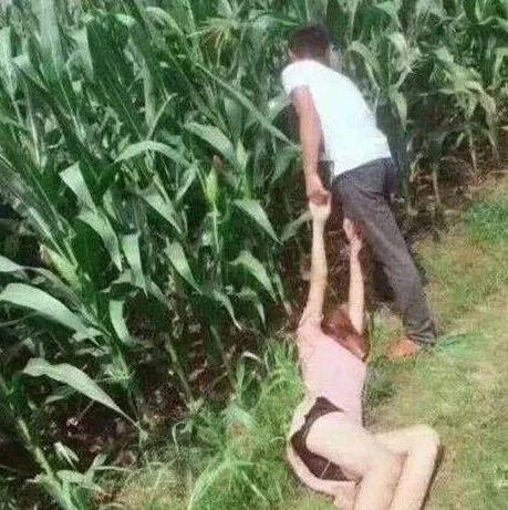 沧州一女子被拖进玉米地,报警后牵出多起强奸案!