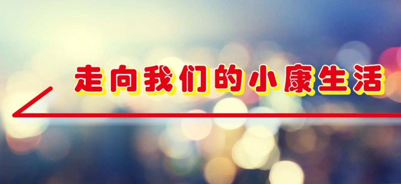 河南淅川县:特色产业护航百姓小康路