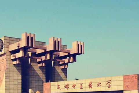 中国最厉害的10所中医药大学最新排行,其中两所大学排位抢眼!