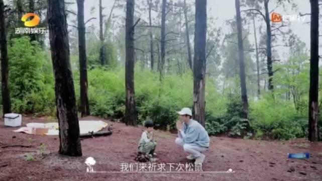跟着小朋友来树林找松鼠太可爱了!