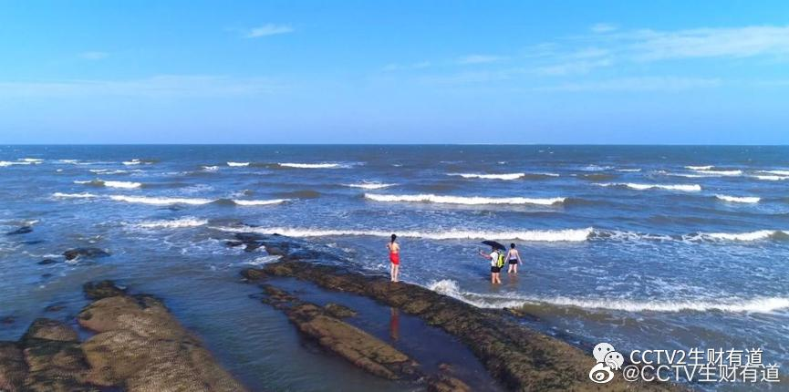 位于黄海之滨的山东省日照市,是一座有山有海有风情的美丽城市