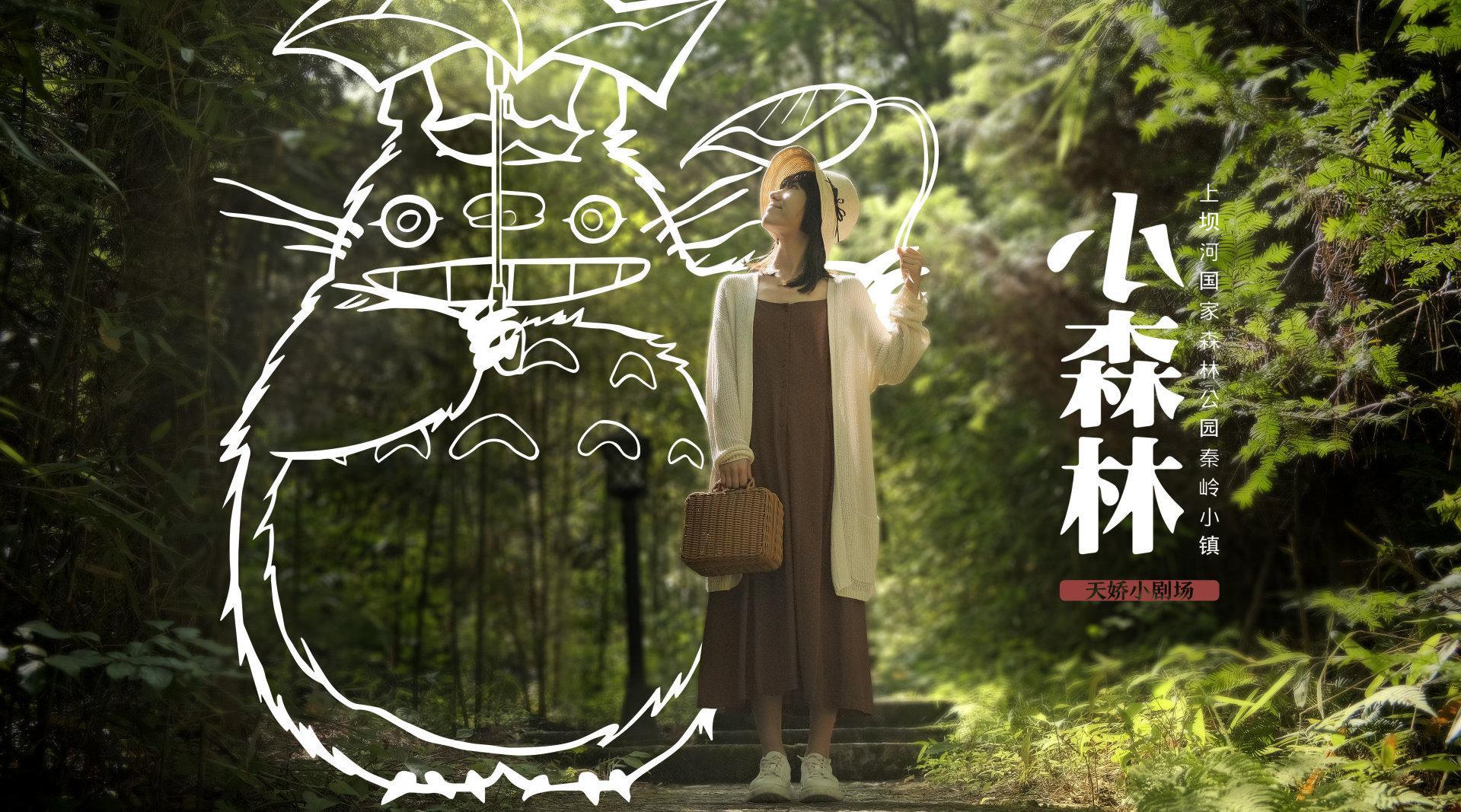 宫崎骏电影里的童话世界 我在「上坝国家河森林公园秦岭小镇」找