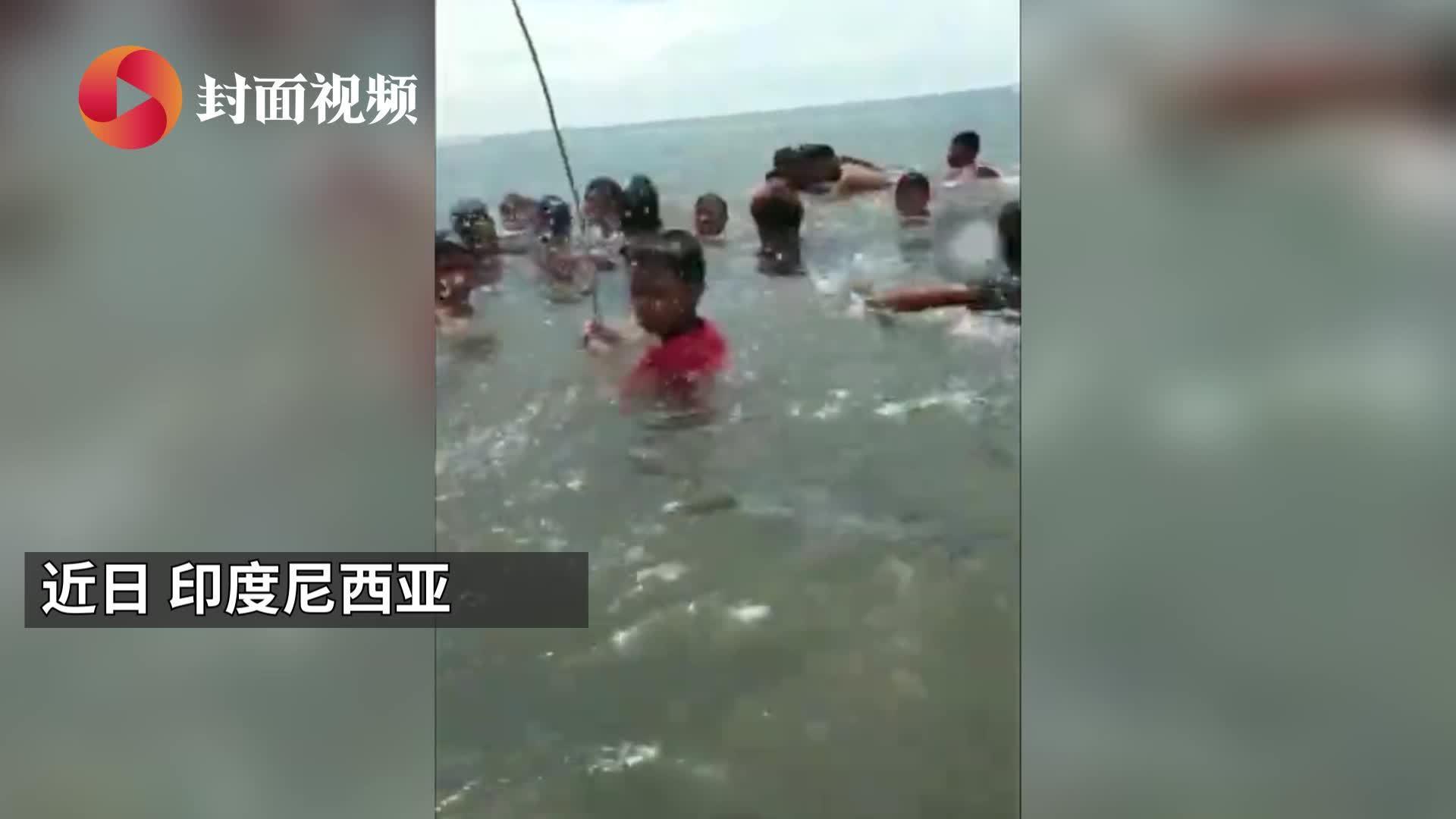 印度尼西亚一虎鲸搁浅 村民以为是海豚纷纷拥抱合影