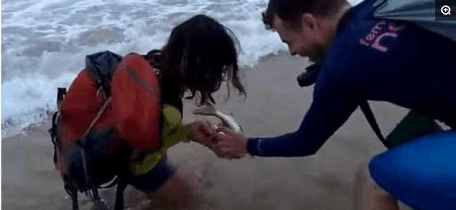 女游客抓鲨鱼自拍显摆被咬,最后因触犯动物保护条款被罚款四万